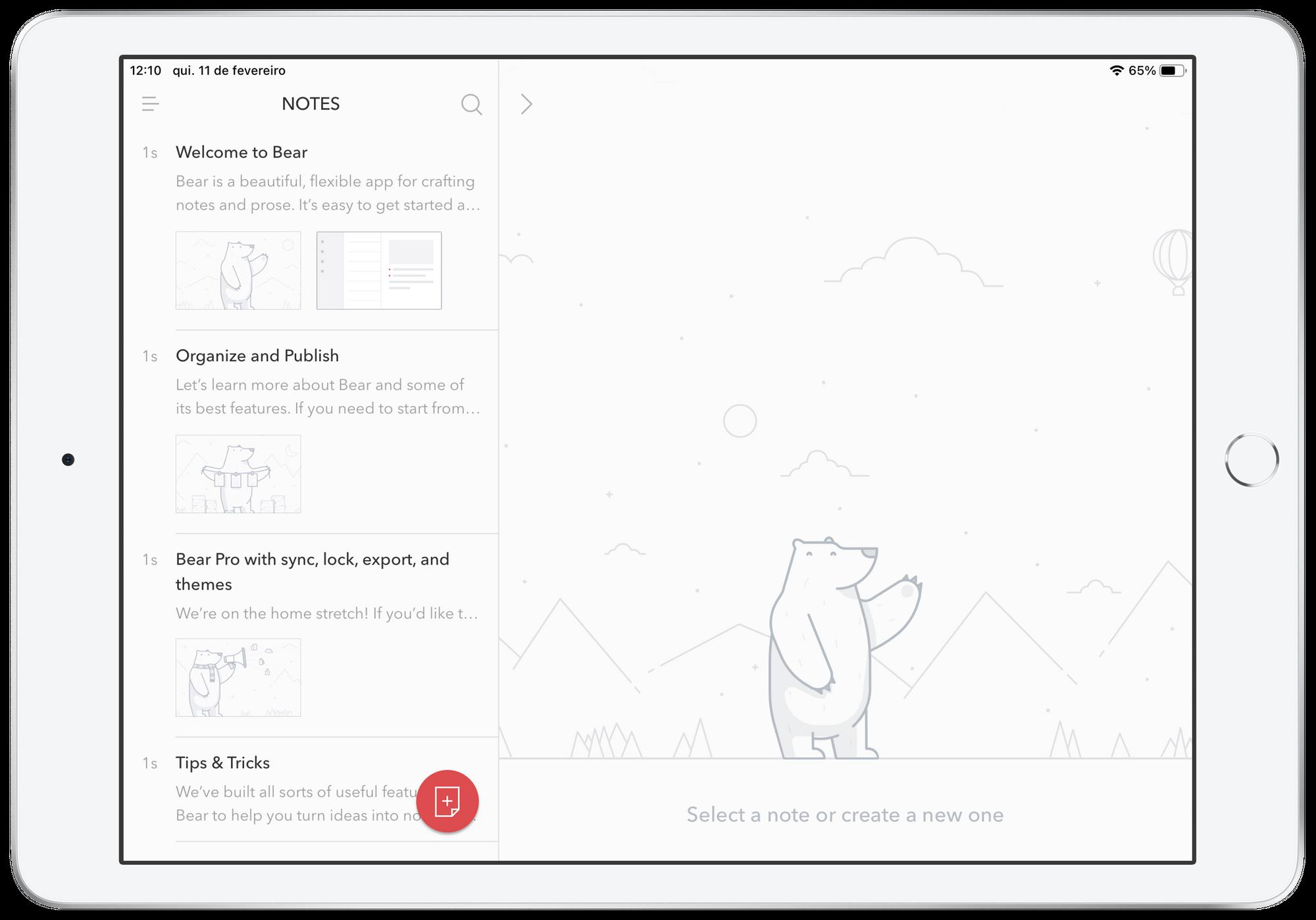 Bear no iPad